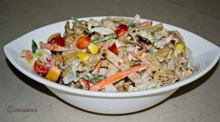 roti-chicken-salad-5468.jpg